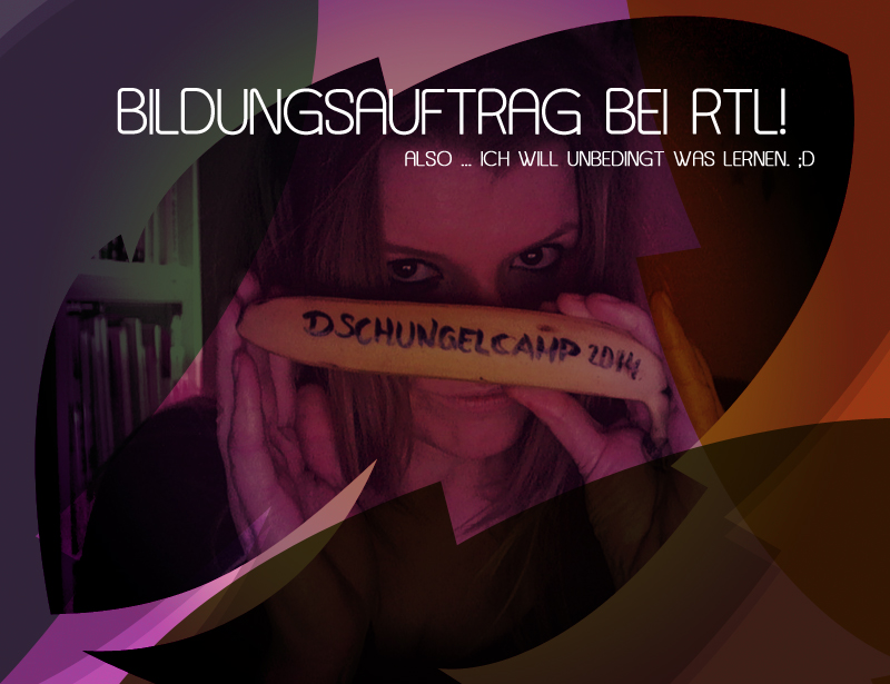 RTL Dschungelcamp 2014 Alle Kandidaten im Überblick