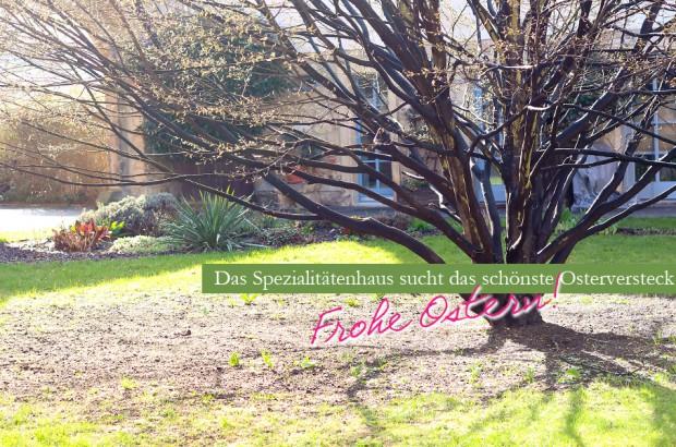 Das Spezialitäten-Haus sucht das beste Osterversteck