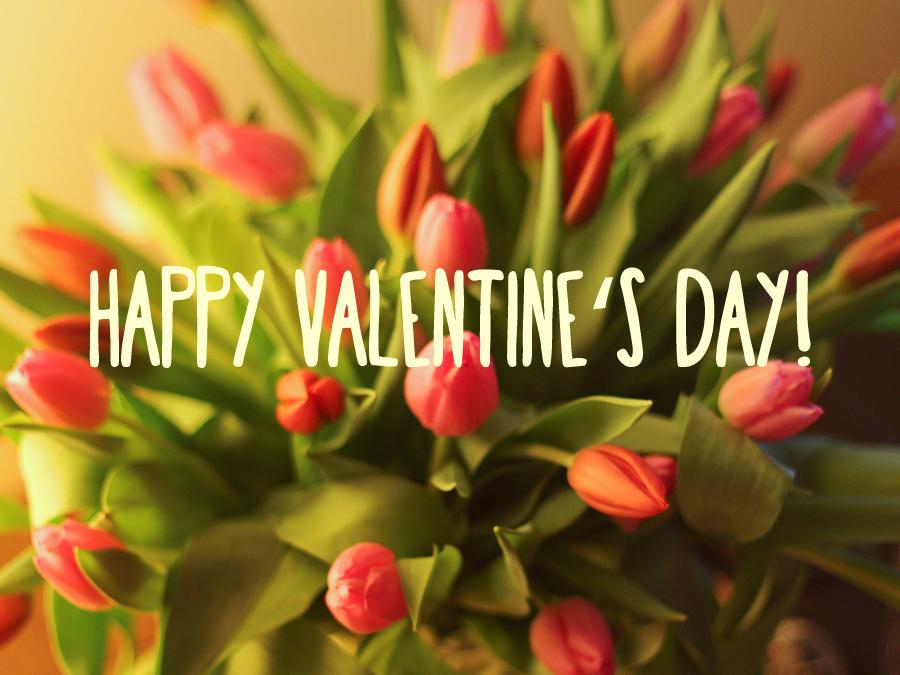 Happy Valentine's Day! Schönen Valentinstag! : )